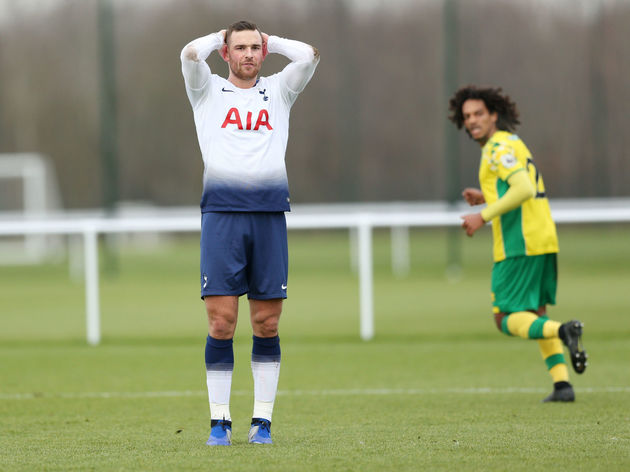 Image result for vincent janssen