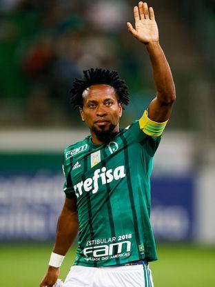Palmeiras v Botafogo - Brasileirao Series A 2017