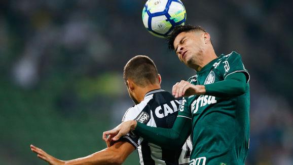 Palmeiras v Botafogo - Brasileirao Series A 2018