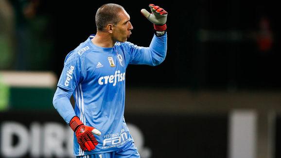 Palmeiras v Sport Recife - Brasileirao Series A 2017