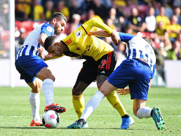 Etienne Capoue,Neal Maupay,Dale Stephens