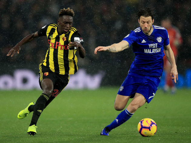 Watford FC v Cardiff City - Premier League
